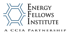 Cleantech Fellows Institute changes name to Energy Fellows Institute
