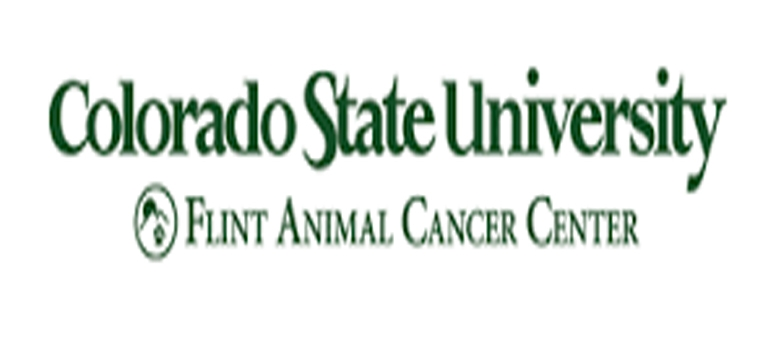 CSU today opens state-of-art vet oncology clinic