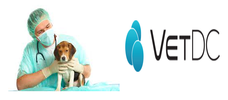 VetDC offers new hope for pet cancer treatment